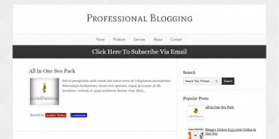 Professional-Blogging-Blogger-Template-410x205