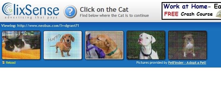 tampilan-view-ads-di-clixsense-2