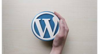 10 Template WordPress Premium Terbaik Tahun 2019